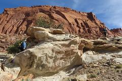 Chimney Rock Trail, Capitol Reef, Utah