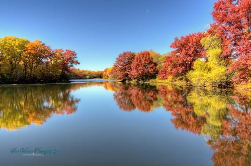 reflection fall colors minnesota fallcolors eagan thomaslake thomaslakepark