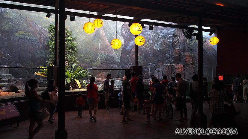 Pumpkins adorn the enclosures