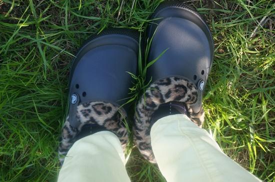 crocs-animal18