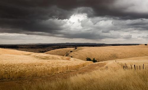 landscape southaustralia gawler