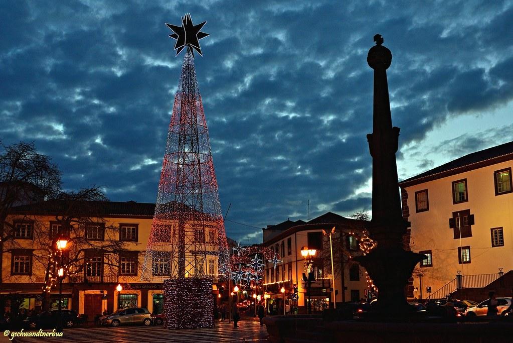 Weihnachtsbeleuchtung in Funchal | Madeira