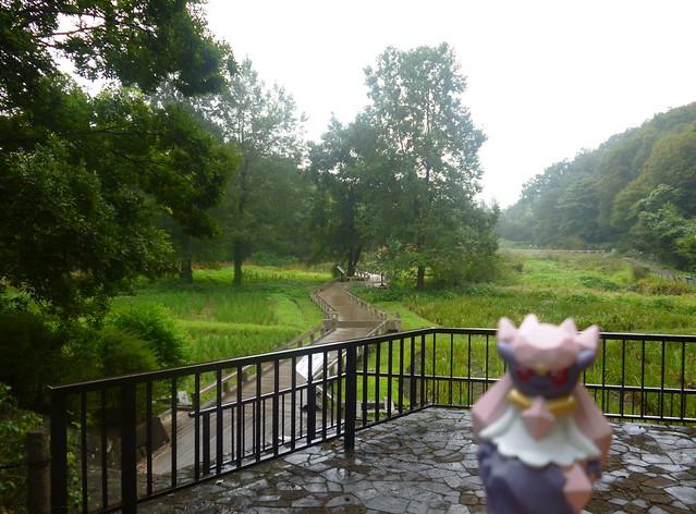 Diancie in Chofu, Tokyo 2 (Jindai Botanical Garden)