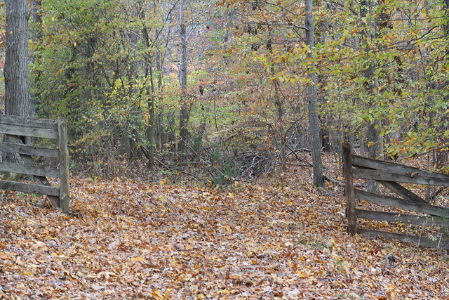 James River State Park Fall 2014 (354)