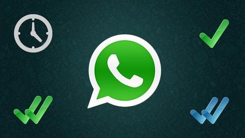 WhatsApp checks