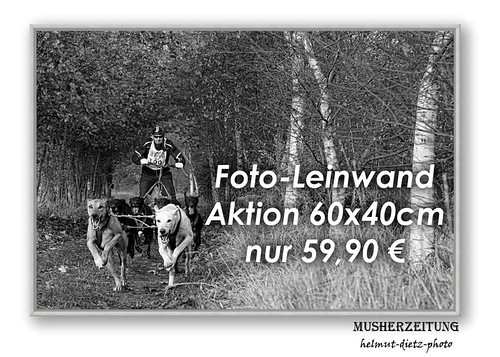 Leinwand-Aktion-60x40