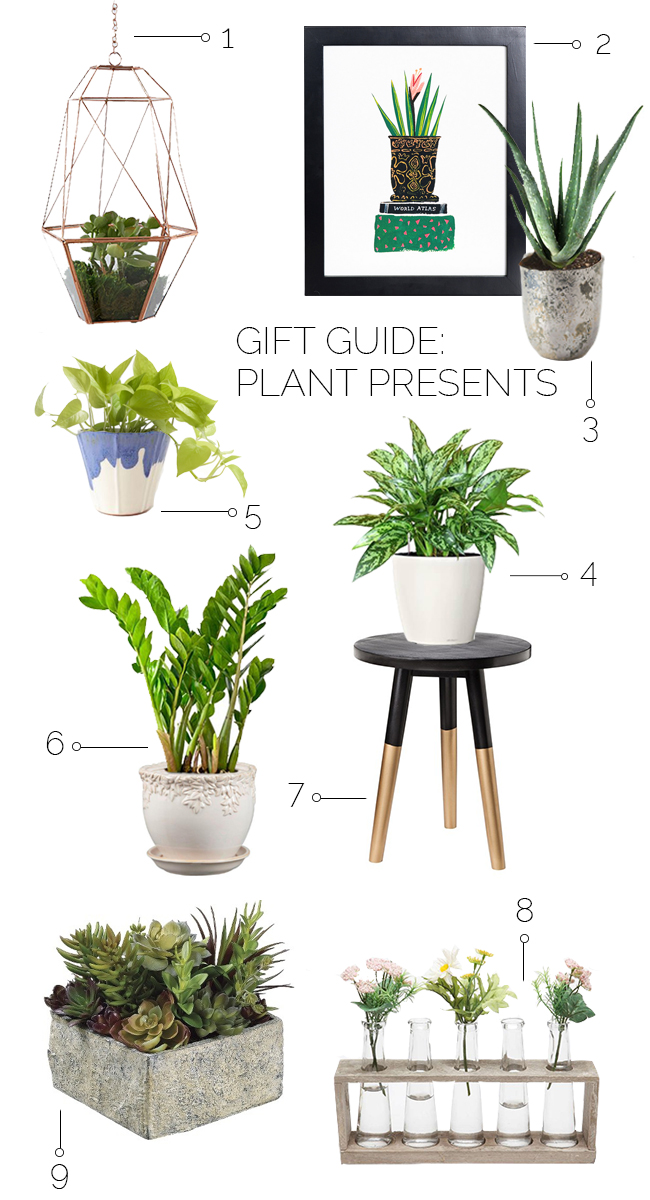 gift-guide-plant-presents