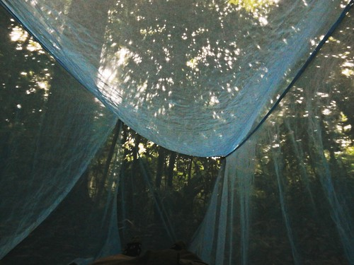 Sleeping in Madidi National Park - Amazon forest - Bolivia