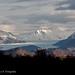Parque Nacional Torres del Paine Glaciar Grey by Alexis Gatica Sepulveda