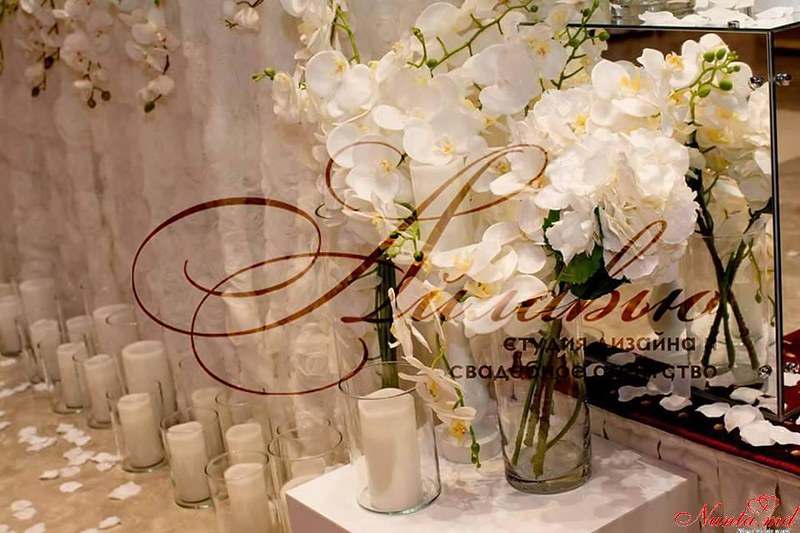 Agenția de organizare a sărbătorilor - «Айлавью» > Foto din galeria `Orhideele sunt niște flori atât de rafinate și elegante. `