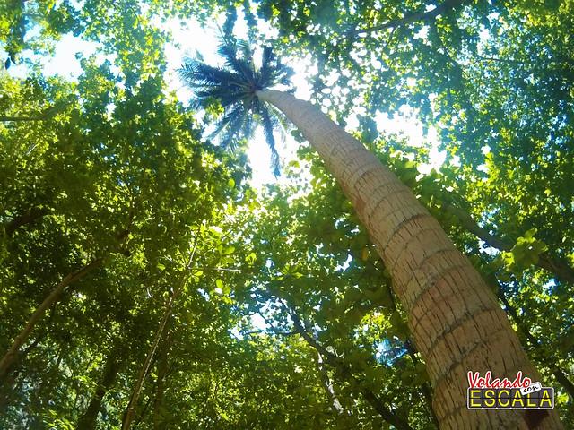 Koh Phi Phi Island