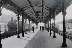 Stoomloc 3819 en TEE DE 4 1002 Utrecht Centraal 5 april 1957(Amersfoort 18-10-2014)