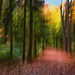 Autumn Path, impressionist by justbelightful