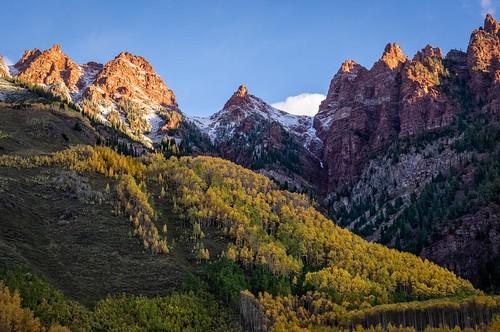 autumn mountain tree sunrise landscape colorado unitedstates foliage aspens aspen goldenhours