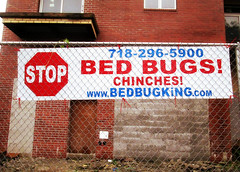 Stop Those Bed Bugs!
