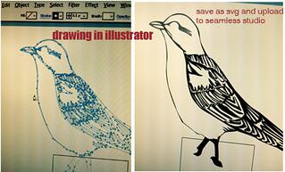 bird tutor