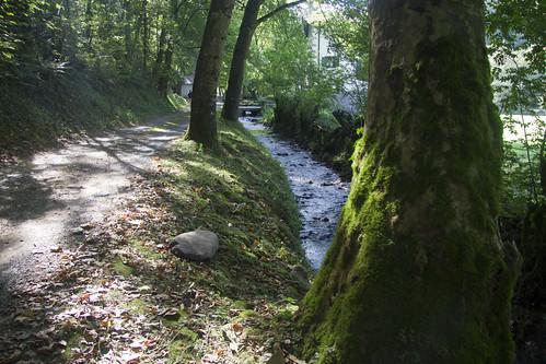 Río en Elizondo