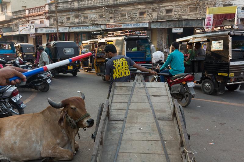 Orders, Jamnagar