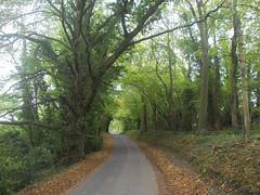hinter road