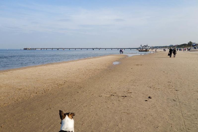 Ostsee-2014-04598.jpg