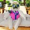 Snorkeling included @beachesresorts #TurksandCaicos #beachesmoms #tourism #nx3000 #imagelogger @samsungtweets