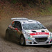 Waldviertel Rallye 2014 by konceptsketcher