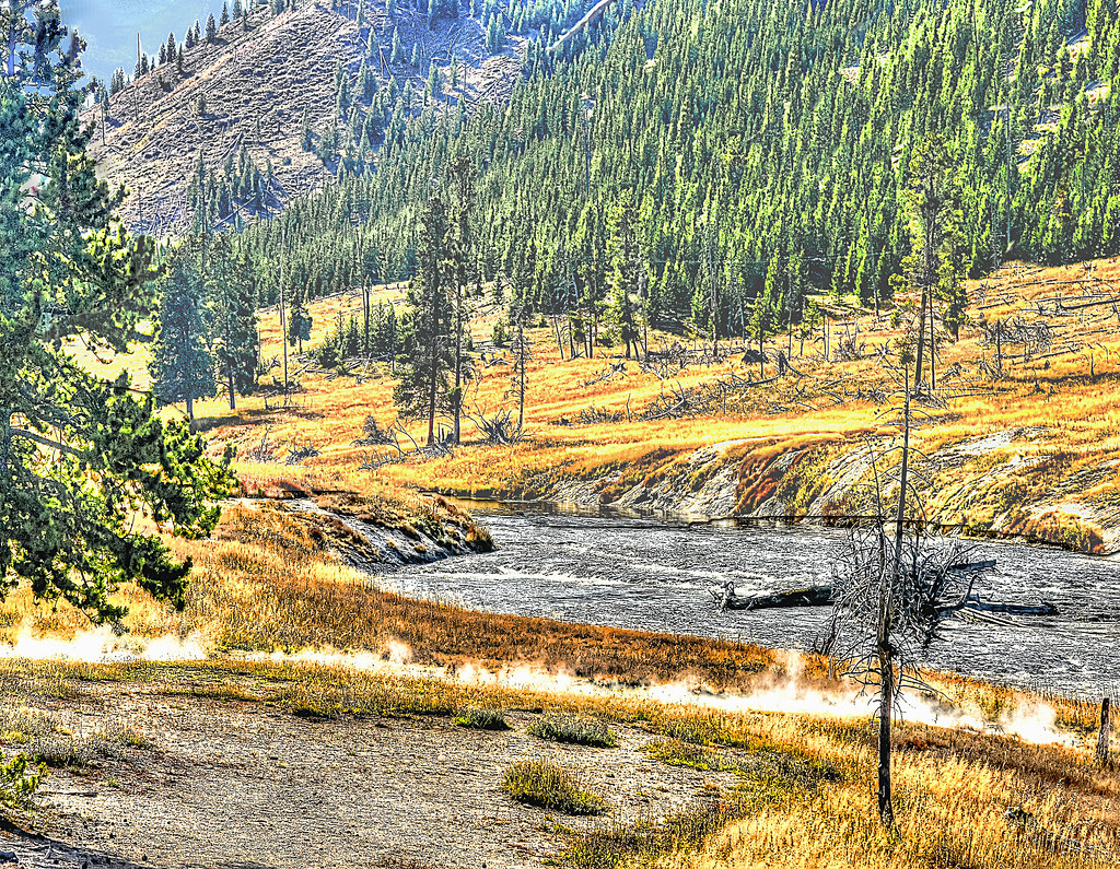 Fly fishing in yellowstone national park two favorites for Yellowstone national park fishing