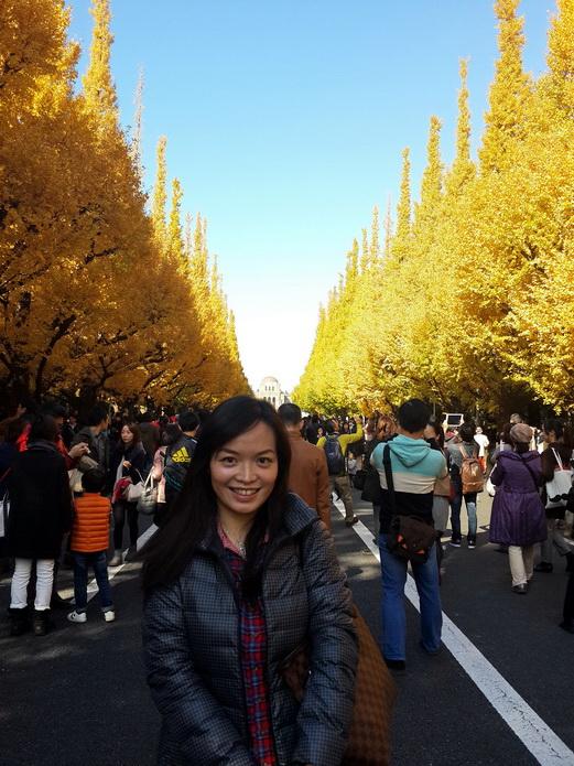 神宮 外苑 銀杏 並木 現在