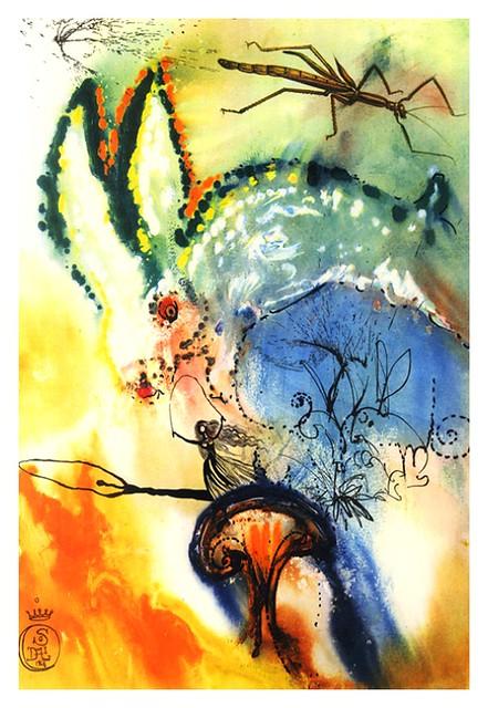 002- Bajando al agujero del conejo-enmarcada-Salvador Dali-via William Bennett Modern
