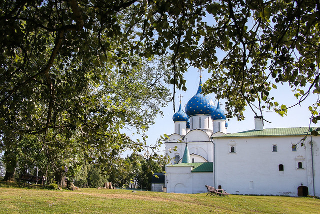 Cathedral of the Nativity from the woods, Suzdal スズダリ、ラジヂェストヴェンスキー聖堂