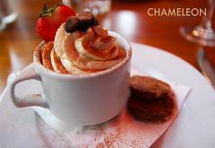 Cappuccino Crème Brûlée - Made With Kahlúa and…