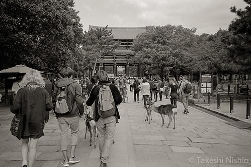 Nandai-mon gate
