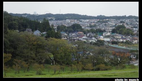 狹山丘陵不斷被開發,森林急速消失。圖片來源:munch