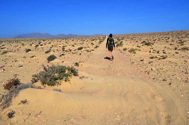 Hot dry land, Fuerteventura, Canary Islands