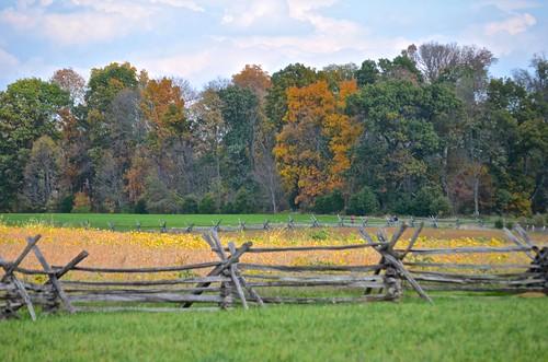 fence cornfield rails antietam battlefield hff