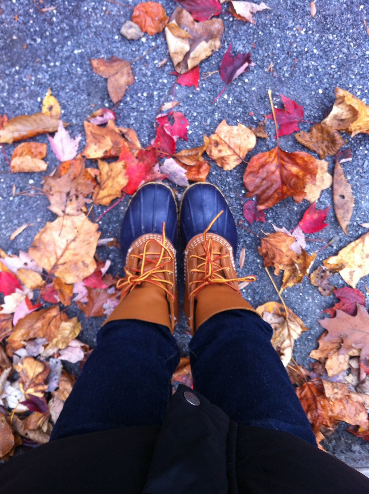 bean boots and fall leaves