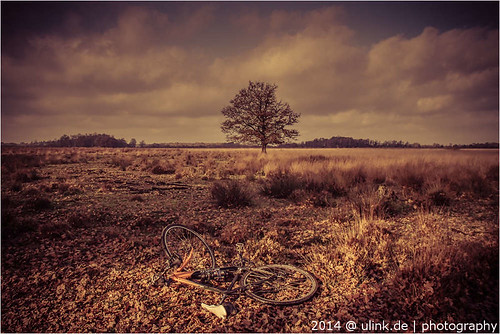 _cross_cycling