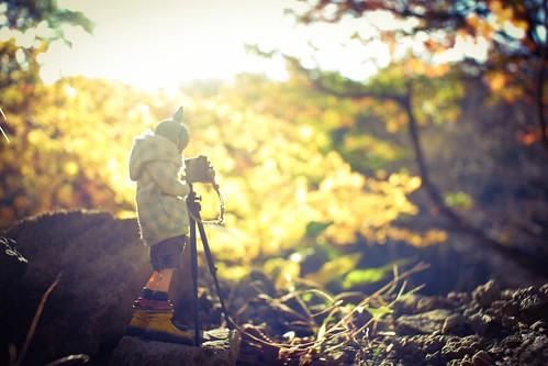 カメラロール-9874