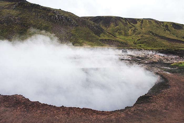Iceland_Spiegeleule_August2014 039