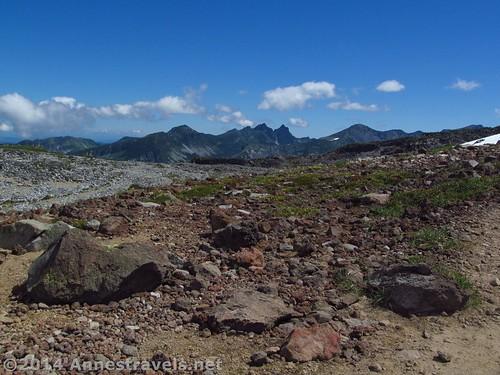 More views from the top of Spray Park, Mt. Rainier National Park, Washington