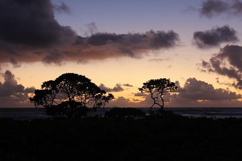 nukolii beach sunrise kauai september 2016 island pacific ocean silhouette ハワイ 風景