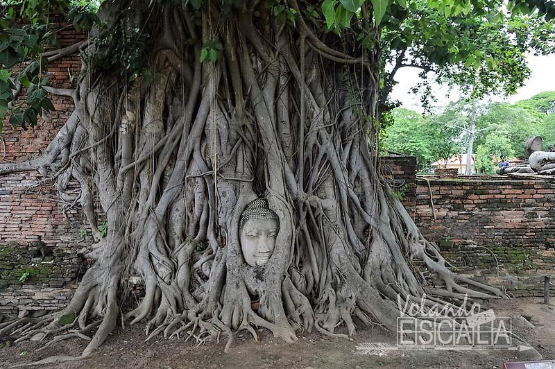 Parque histórico de Ayutthaya