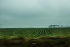 44-Irrigation - Photo of Le Barp