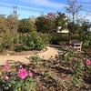 This spot's just waiting for you! #lewisginter #rvagardentrail