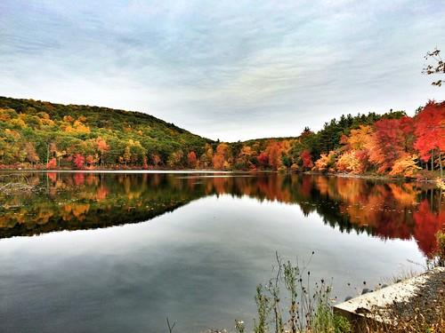 The foliage at Hurds Lake, Somers, CT