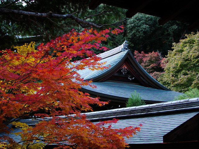 Kinkaku-ji & Ryoan-ji