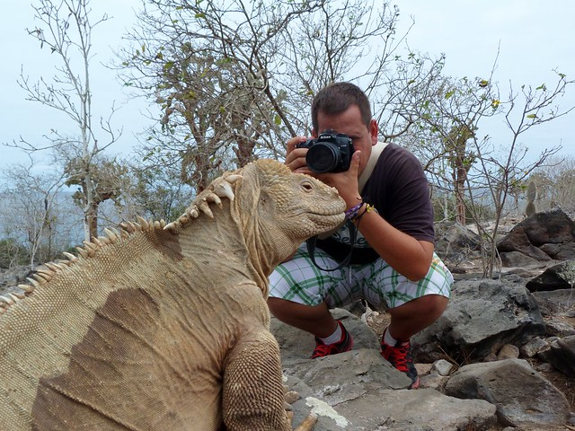 Sele tomando una fotografía de una iguana de Santa Fe (Galápagos)