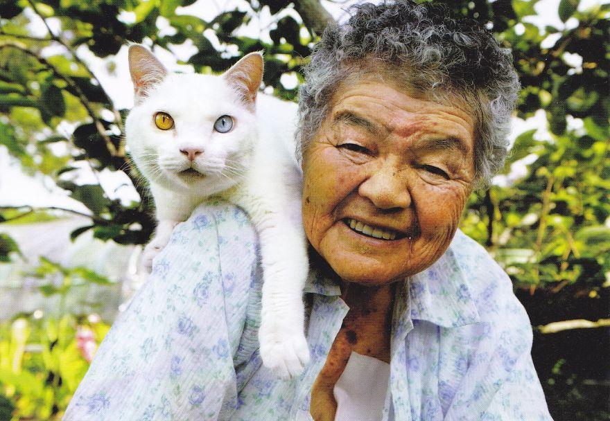 Những con mèo nổi tiếng nhất trên internet