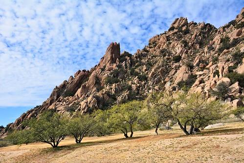 trees arizona usa rock nikon day desert i8 parkingarea d7100 pwpartlycloudy interstatehighway8