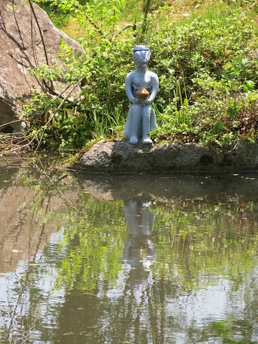 Taro's Pond